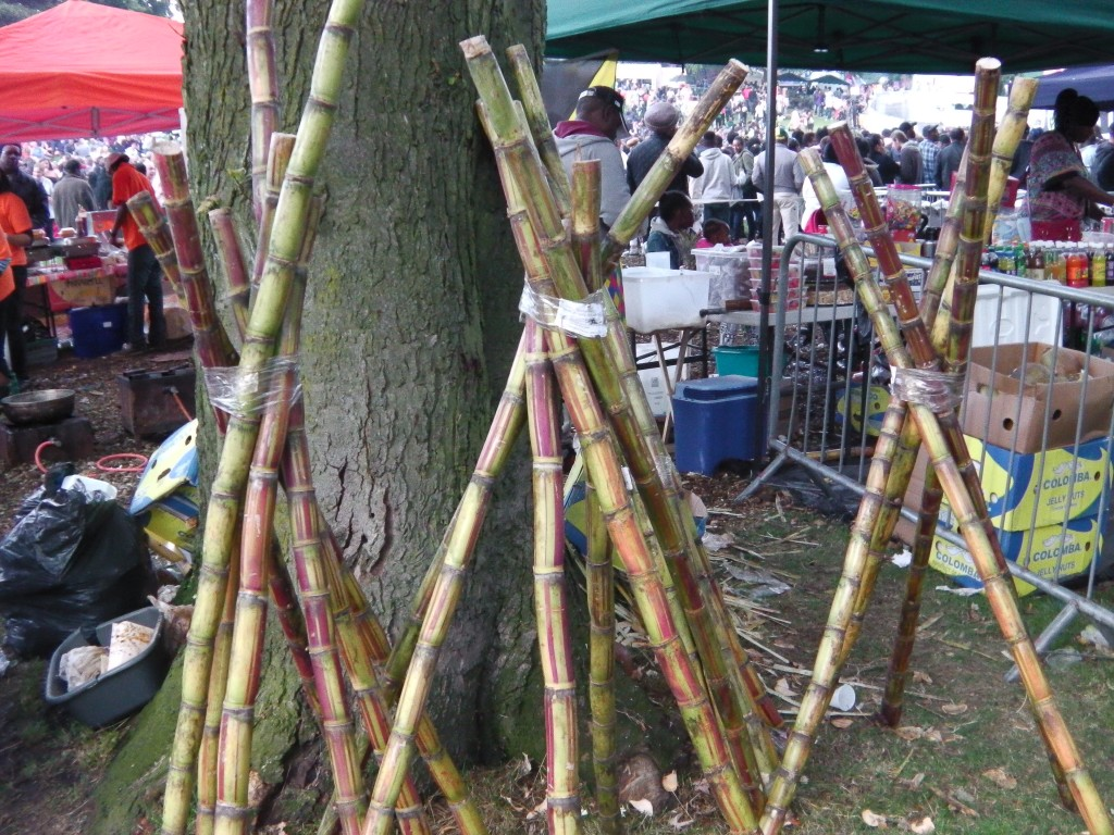 Sugar Cane Sticks at Leeds Carnival